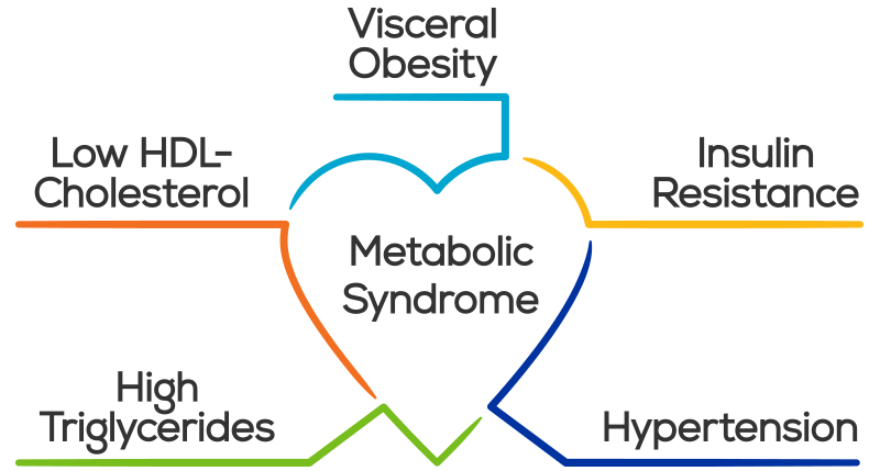 Do you have the metabolic syndrome and what you can do about it.